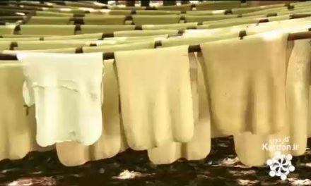 تولید لاستیک طبیعی یا کائوچو Natural Rubber