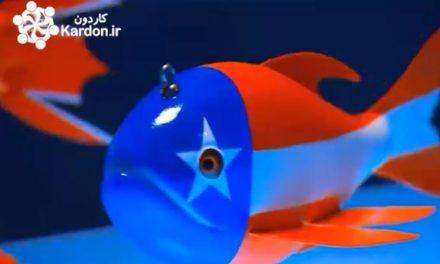 ساخت طعمه ماهی Fish Decoys