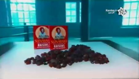 کارخانه کشمش Raisins