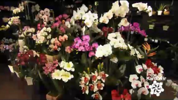 ساخت گل مصنوعی Artificial Flowers